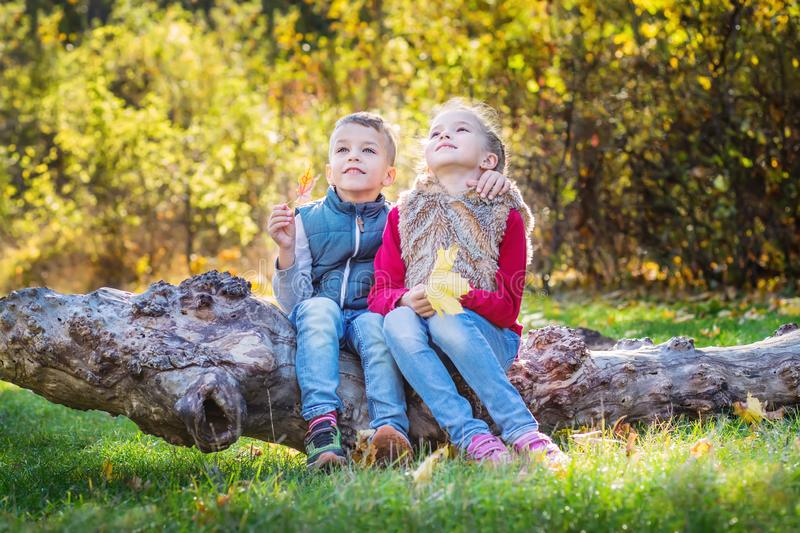 Autumn portrait of happy kids, brother and sister stock photos