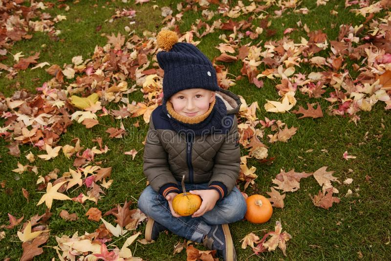 Happy boy with pumpkin royalty free stock photos