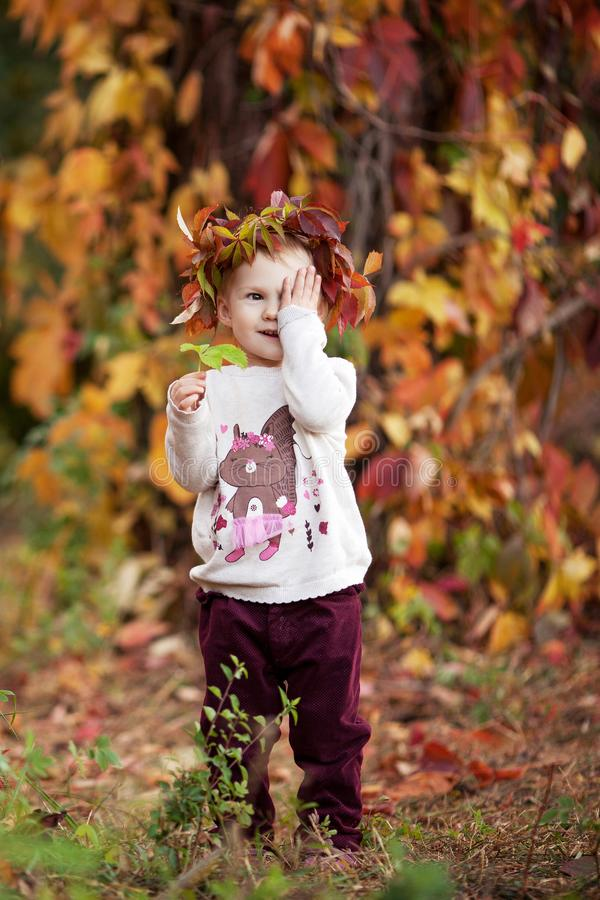 Autumn portrait of little  girl. Pretty little girl with red grape leaves in autumn park. Autumn activities for children. Halloween and Thanksgiving time fun royalty free stock photo