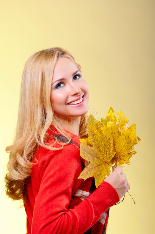 Autumn portrait of young pretty woman stock images