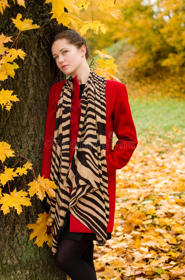 Autumn Portret Of Beautiful Girl Royalty Free Stock Photo