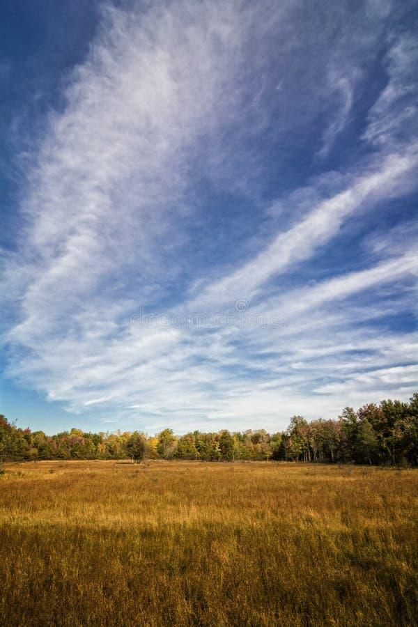 Autumn Prairie arkivbilder