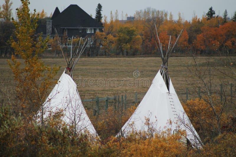 Autumn Prairie, arbres et tipis image stock