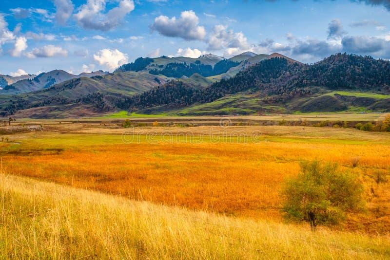 Autumn prairie at sunset stock image