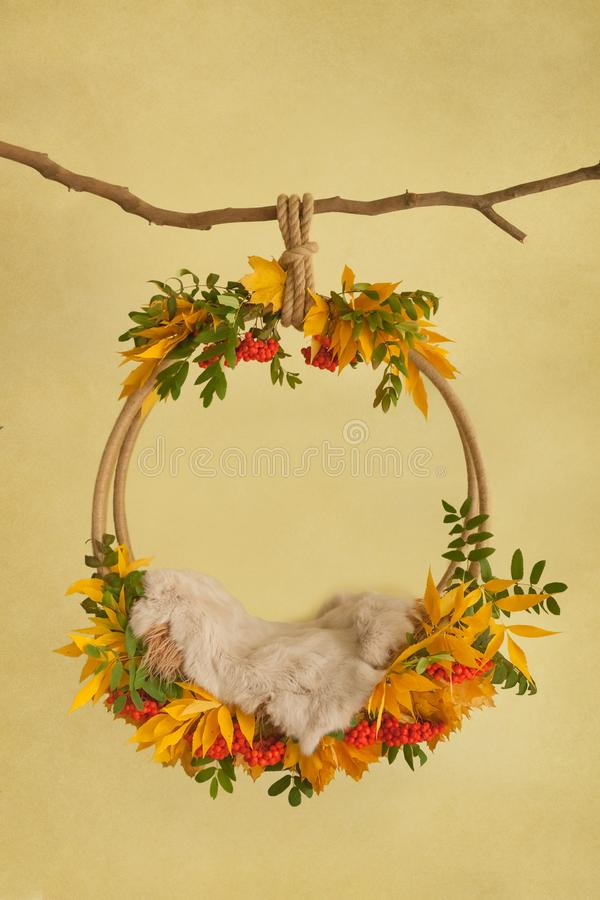 Autumn props for photographing newborns, pendant ring on a branch with rowan, yellow and red leaves and beige skin on a yellow bac. Autumn props for royalty free stock photo