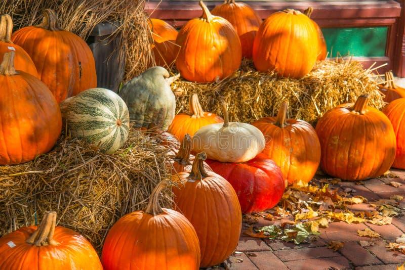 Autumn Pumpkin Display con Straw Bales fotografía de archivo