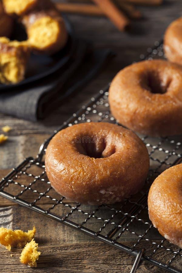 Autumn Pumpkin Donuts vitrificado caseiro imagem de stock royalty free