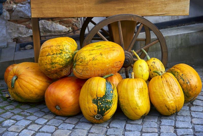 Autumn pumpkin and part of wheel rustic carts. stock photos