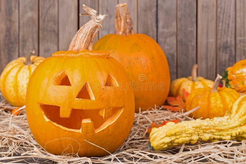 Autumn Pumpkin sonriente foto de archivo libre de regalías