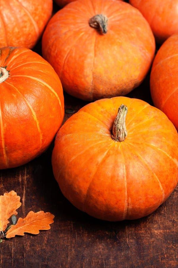 Autumn Pumpkin Thanksgiving Background - abóboras alaranjadas sobre o wo fotos de stock royalty free