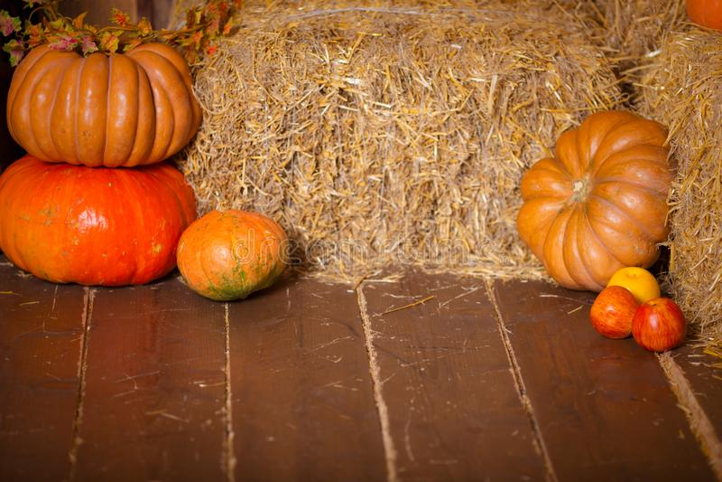 Autumn Pumpkin Thanksgiving Background - abóboras, folhas e flores alaranjadas sobre o assoalho de madeira fotos de stock