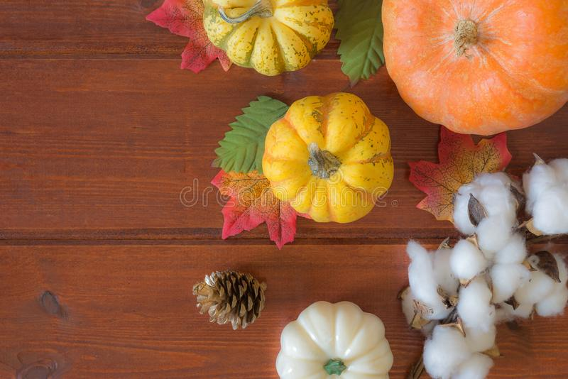 Autumn pumpkin Thanksgiving background. Flat lay, top view royalty free stock photography