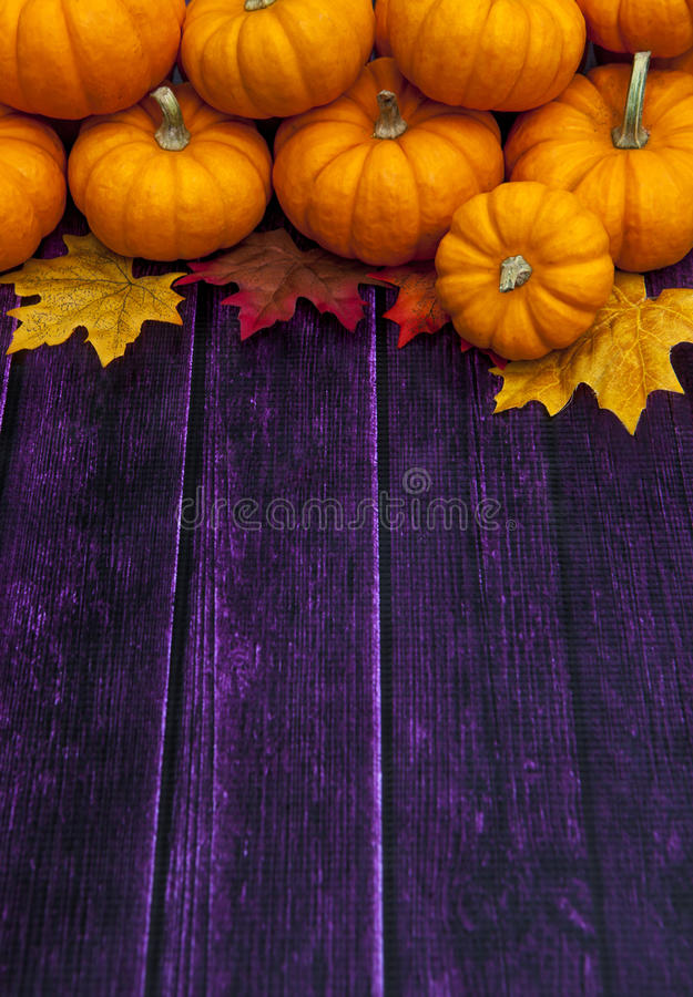 Autumn Pumpkin Thanksgiving Background stock photo
