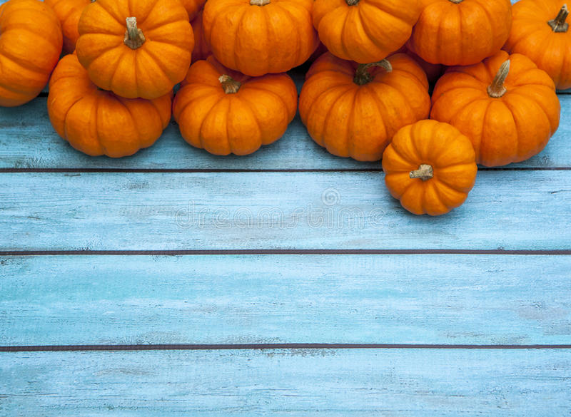 Autumn Pumpkin Thanksgiving Background royalty free stock images