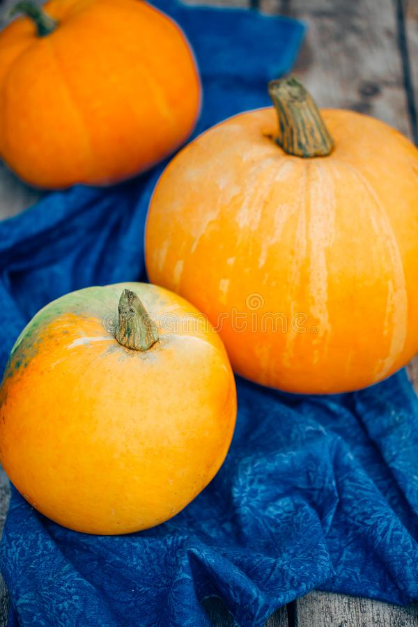 Autumn Pumpkin Thanksgiving Background - oranje pompoenen over wo stock afbeeldingen