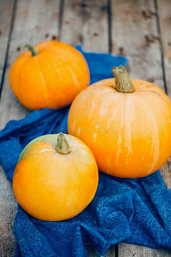 Autumn Pumpkin Thanksgiving Background - oranje pompoenen over wo stock fotografie