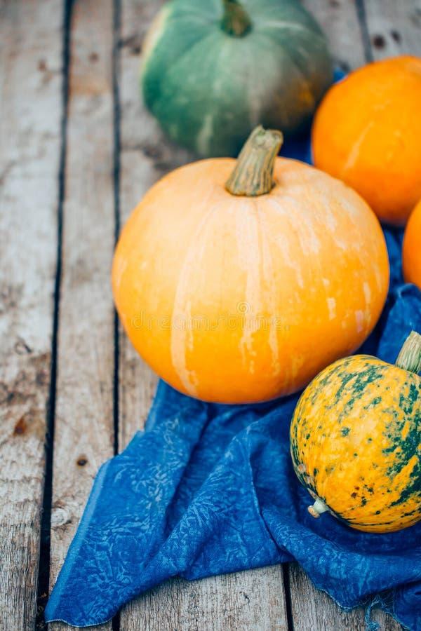 Autumn Pumpkin Thanksgiving Background - oranje pompoenen over wo royalty-vrije stock afbeelding