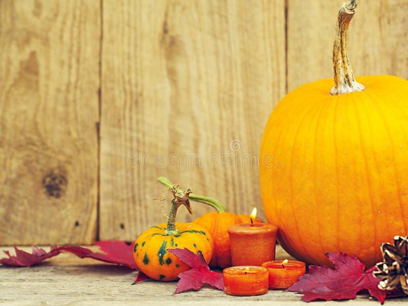 Autumn Pumpkin Thanksgiving-Dekoration stockfoto