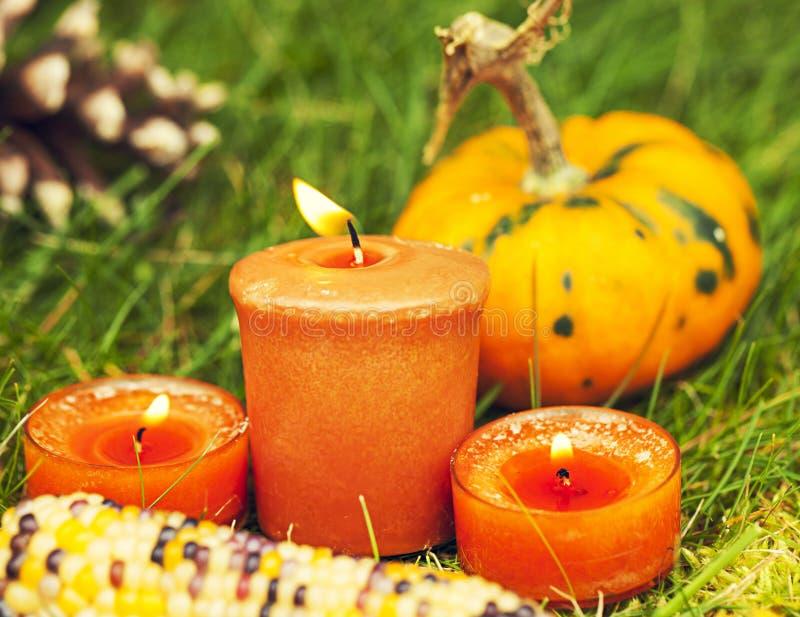 Autumn Pumpkin Thanksgiving-Dekoration stockbilder