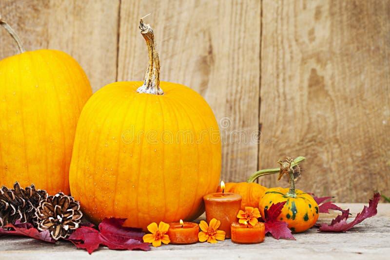 Autumn Pumpkin Thanksgiving-Dekoration lizenzfreie stockbilder