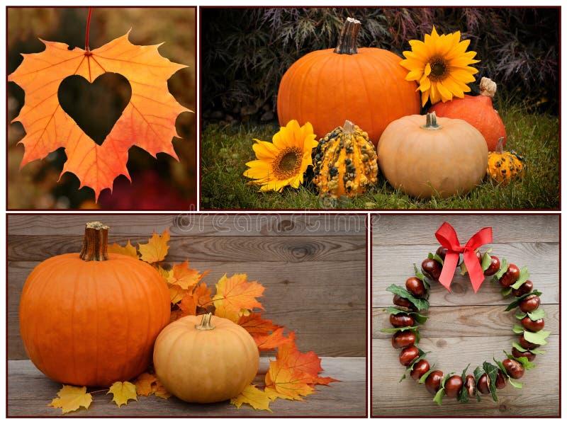 Autumn Pumpkin und Dekoration thanksgiving lizenzfreie stockfotos