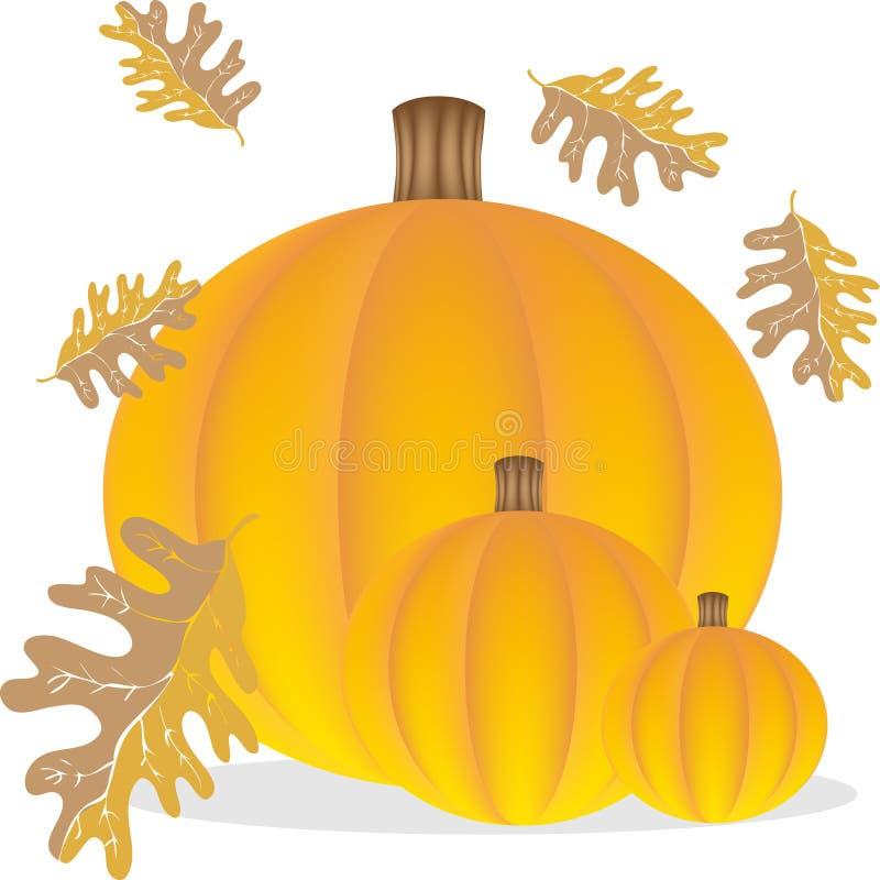 Download Autumn Pumpkins stock vector. Illustration of thanksgiving - 9437267