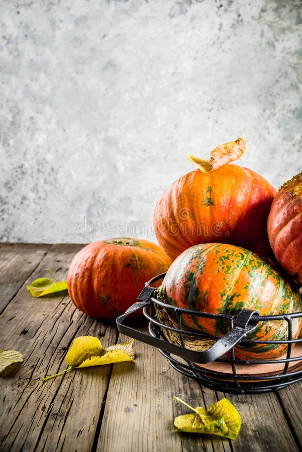 Autumn Pumpkins Background images stock