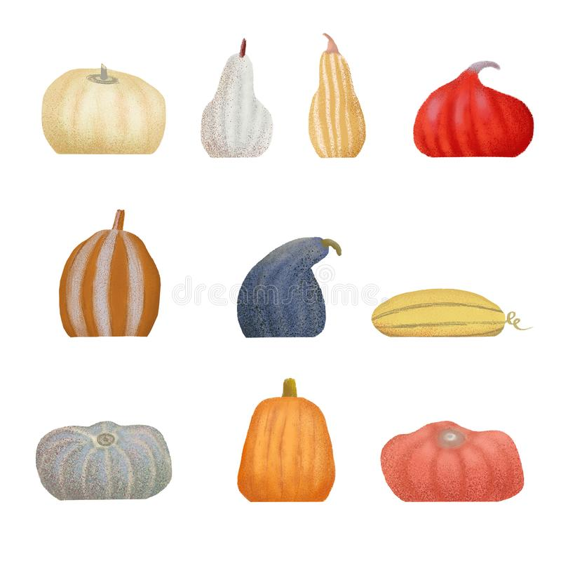 Autumn pumpkins collection. Set on isolated background concept for farmers market organic food in flat style. Raster illustration royalty free illustration