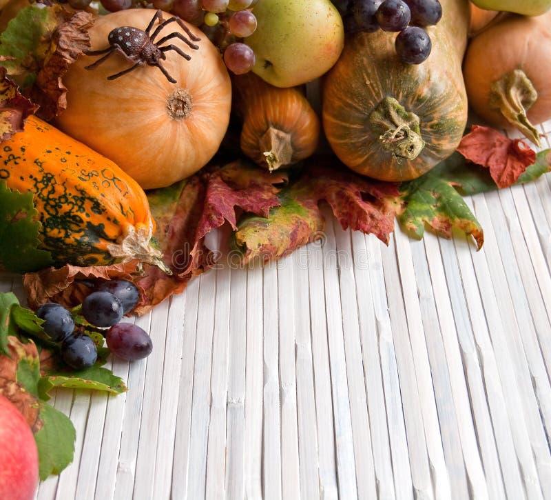 Download Autumn pumpkins stock image. Image of copy, pumpkin, rustic - 33436235