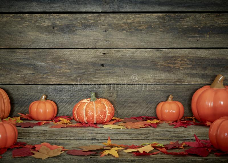 Autumn  pumpkins and leaves on wooden royalty free stock image