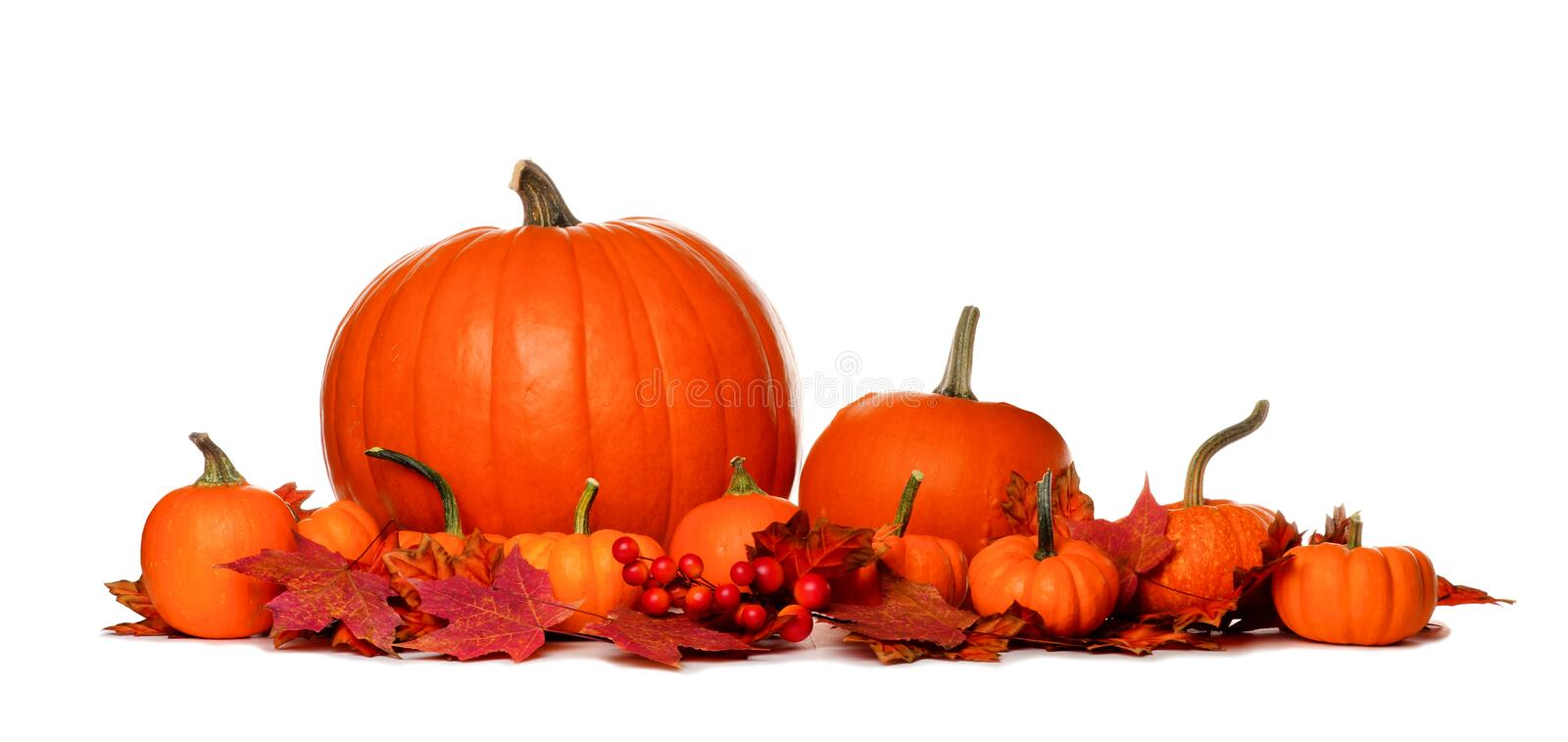 Autumn pumpkins and fall leaves border isolated on white stock photo