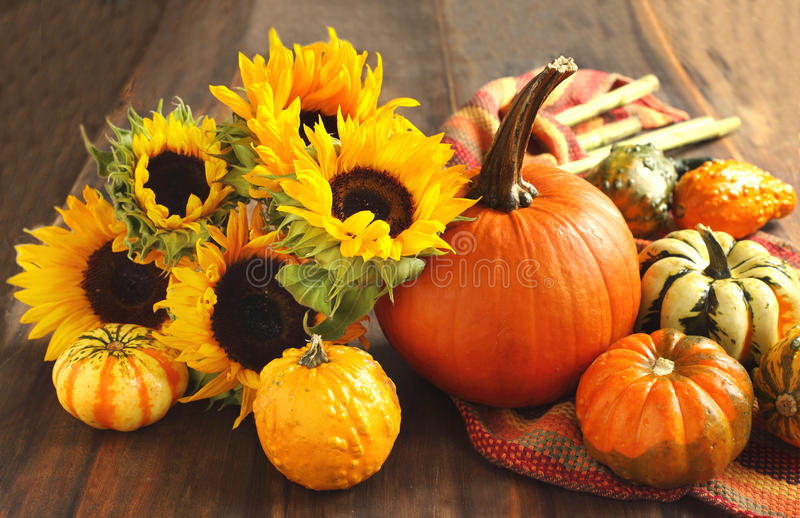 Autumn pumpkins and sunflowers stock images