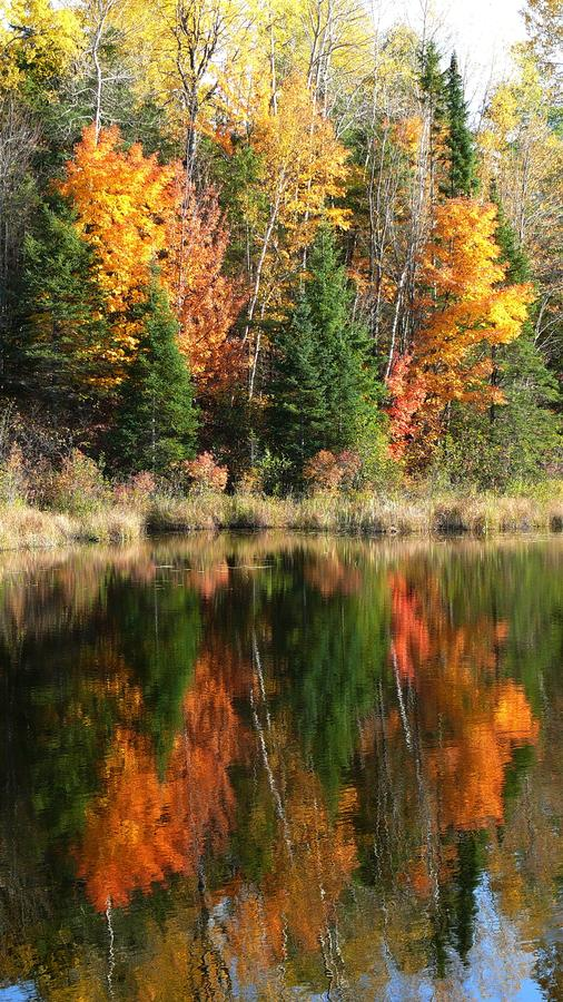 Autumn in Quebec. Canada, north America. Autumn in Quebec. Canada north America royalty free stock photography