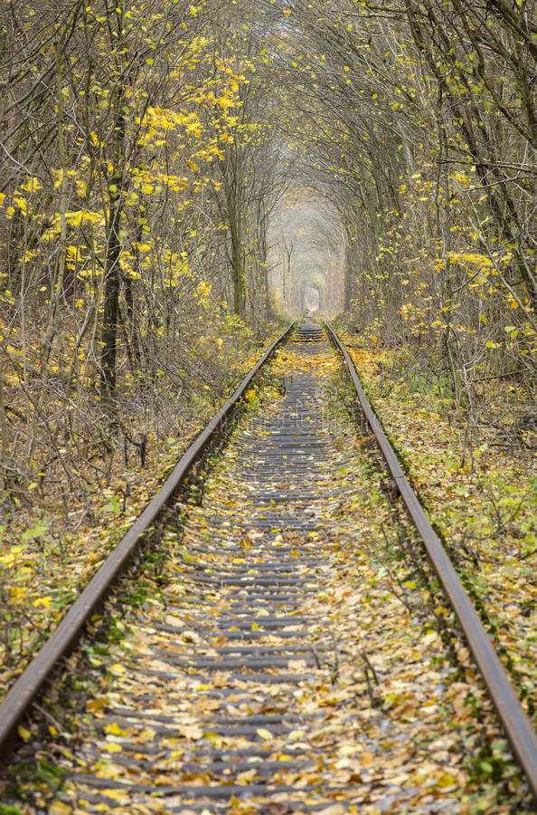 Autumn and rail way royalty free stock images