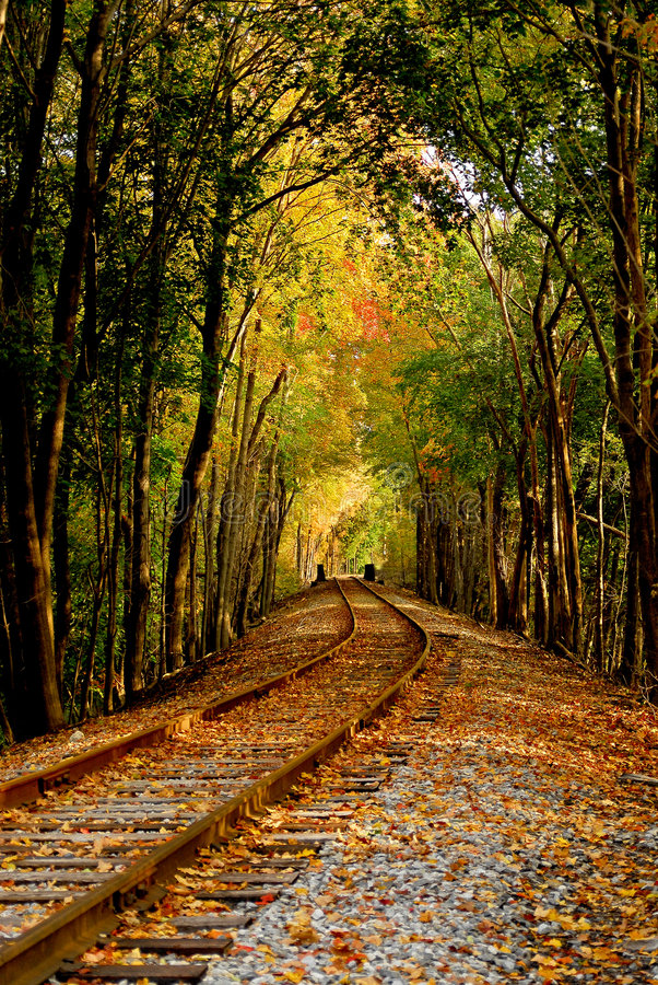 Autumn railroad. Little used rail track in serene autumn pathway stock images