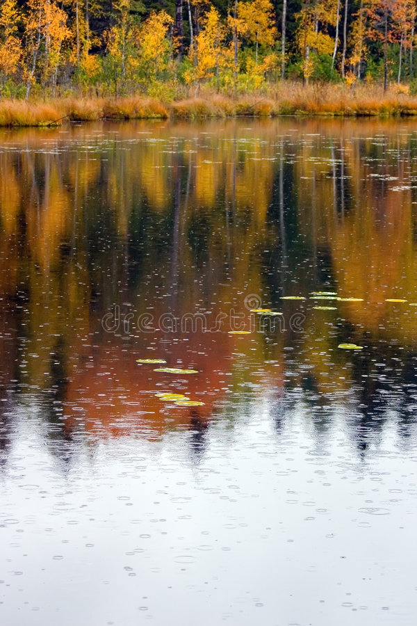 Autumn rain stock images