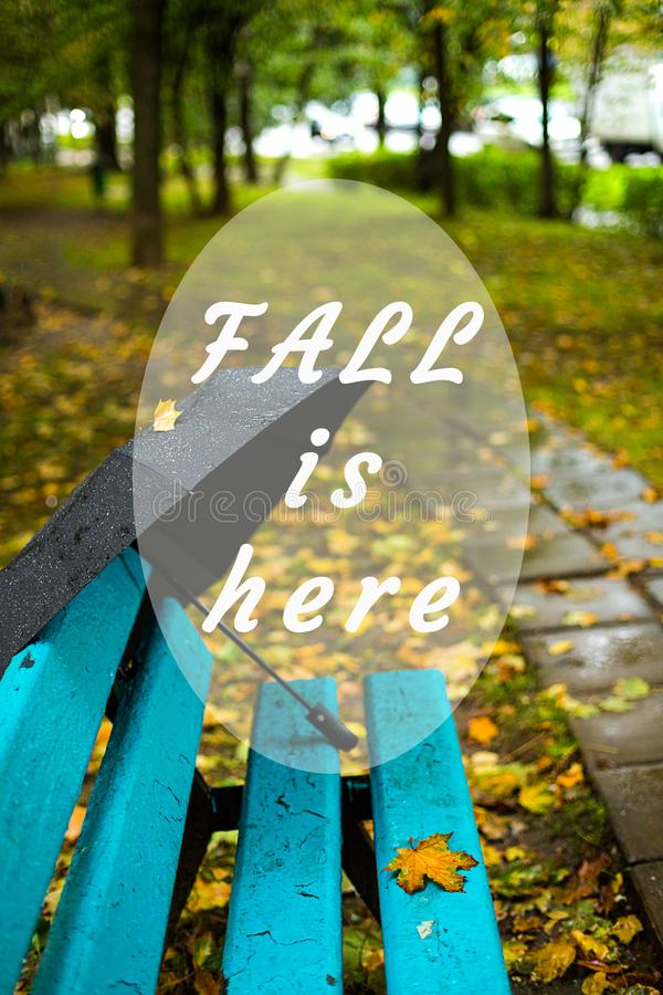 Autumn,rainy,black umbrella.Text `Fall is here`. Autumn season, rainy weather. Black umbrella, park or wood. Walk, wet ground and yellow leaves. Text `Fall is stock photos