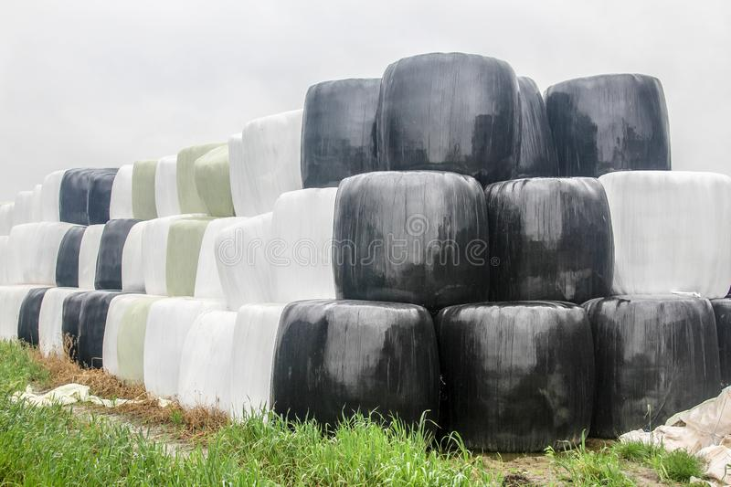 Autumn rainy day. Round silo bales wrapped in a black, white and green membrane and laid like a pyramid. stock photography