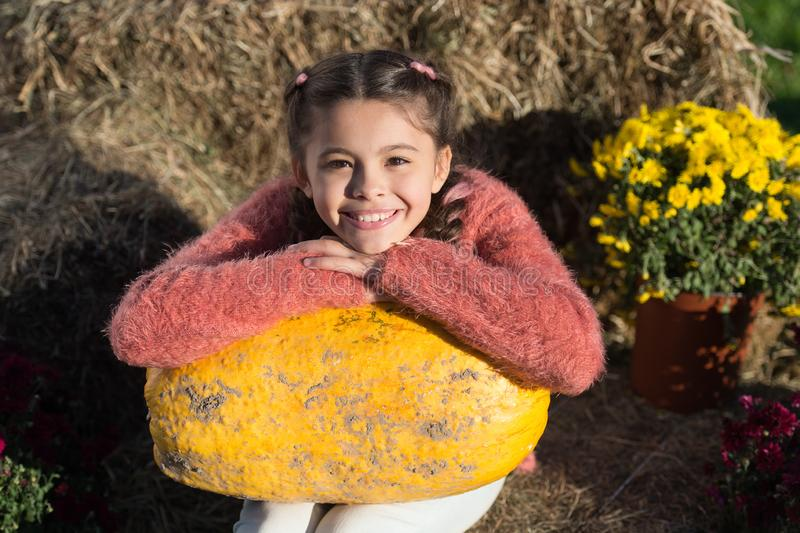 This is autumn. ready for halloween. autumn time. cheerful kid dried flower. fall composition. what can be cooked from royalty free stock photo