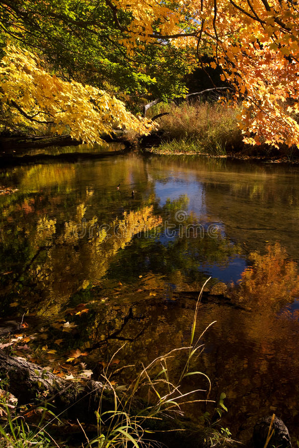 Download Autumn Reflection stock image. Image of reflection, fall - 28849567