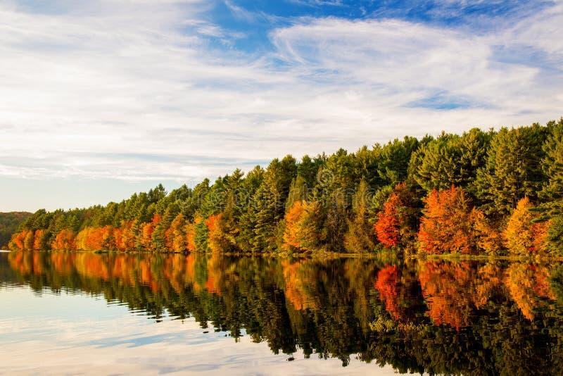 Autumn Reflection stockbild