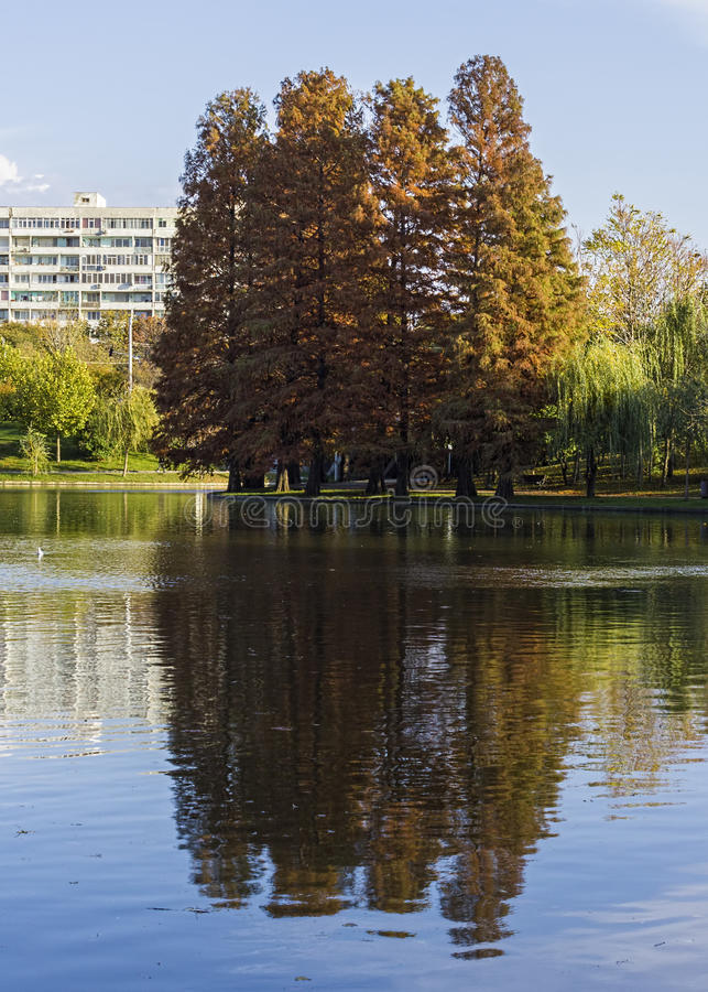 Autumn reflection. Another shot and beautiful reflection in the park at Lake Titan, Bucharest royalty free stock photo