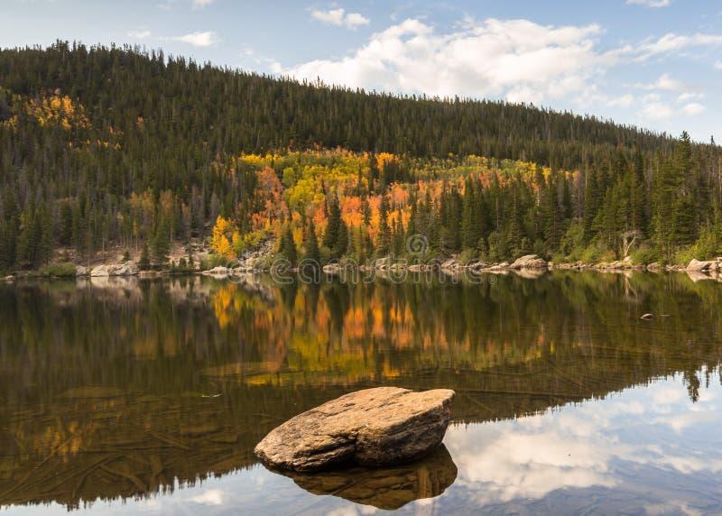 Autumn Reflection björn sjö, Rocky Mountain National Park, Co fotografering för bildbyråer
