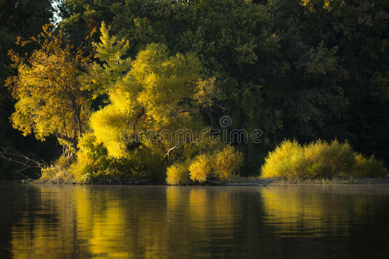Autumn Reflections imagens de stock royalty free
