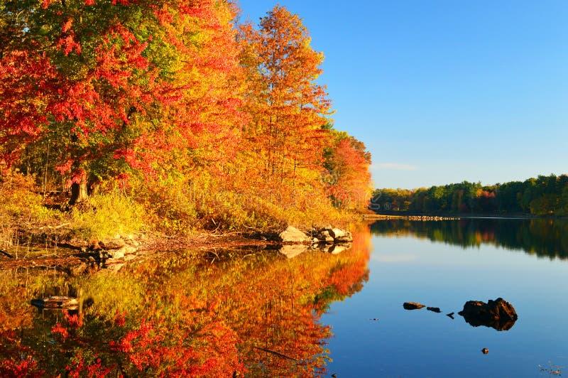 Autumn Reflections royalty-vrije stock afbeelding