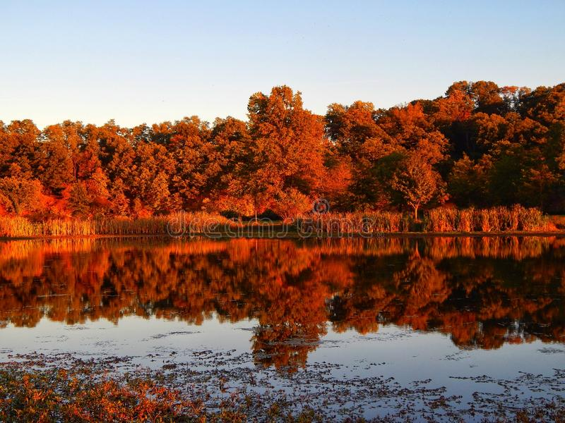 Autumn Reflections Across The Pond royalty-vrije stock fotografie