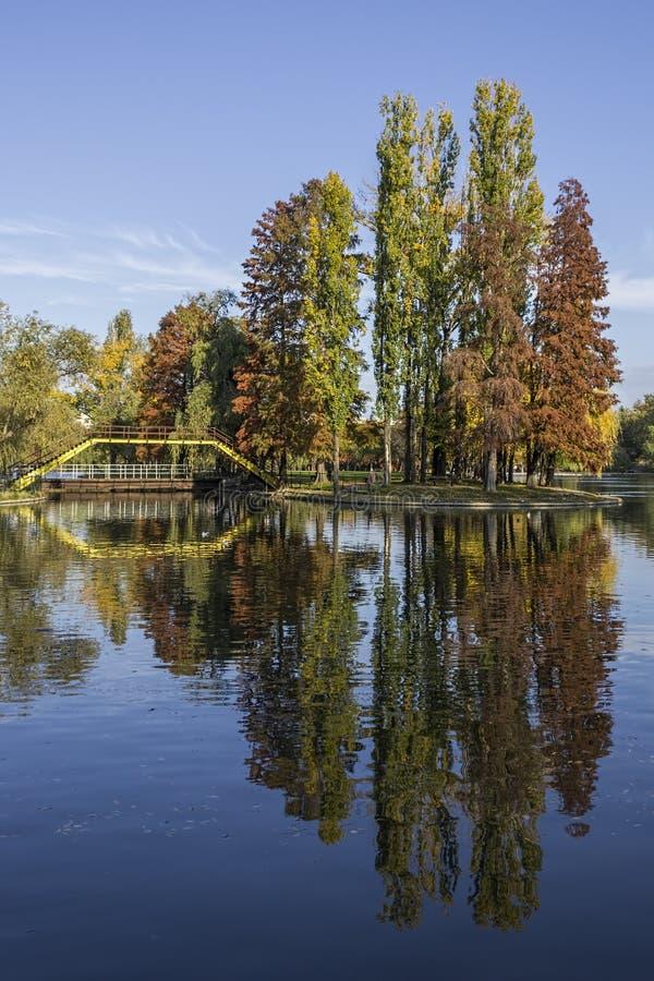 Autumn Reflections. A beautiful trees reflection at Titan Park, Bucharest stock photos