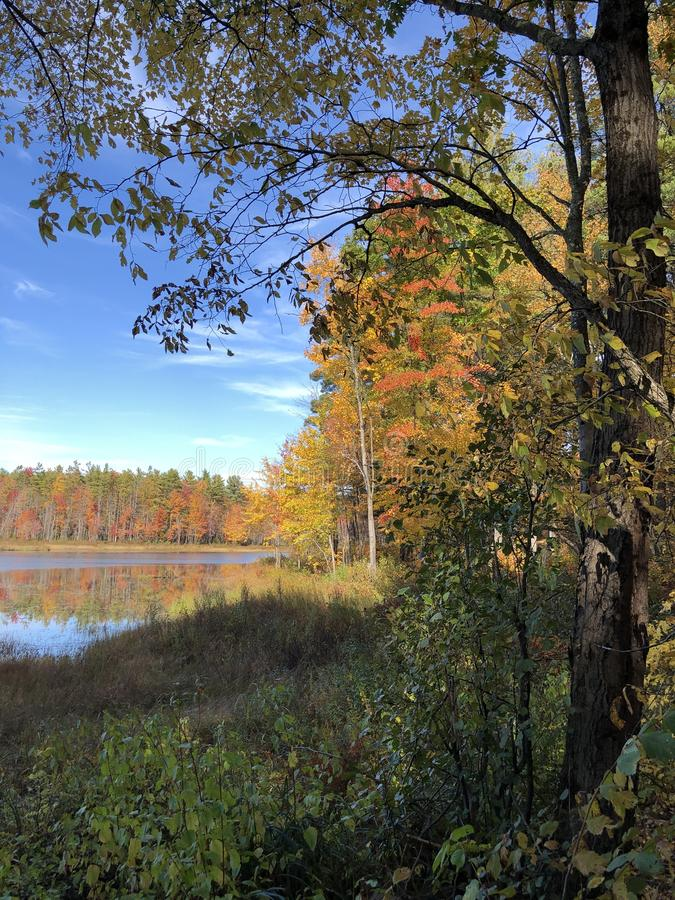 Autumn reflections stock image