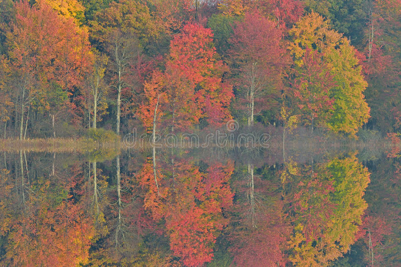 Autumn Reflections Deep Lake stock image