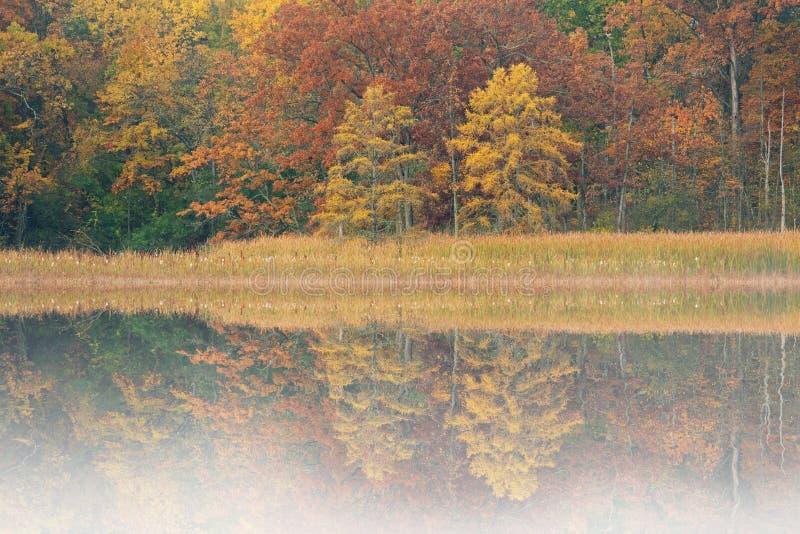 Autumn Reflections Douglas Lake stock photos